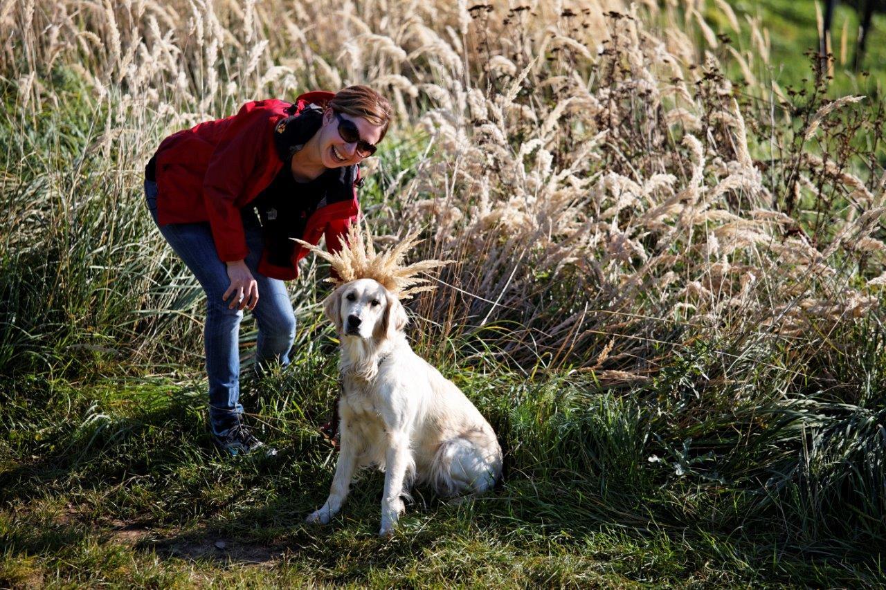 Herbstpackage_Michlhof_Wandern_Urlaub mit Hund (c) bernhardbergmann